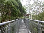 Otway Fly - the walkway