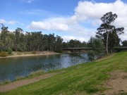 8 - The mighty Murray River at Tocumwal
