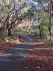 Scotchmans Creek Walk 2015